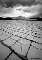"""Mud Cracks"""