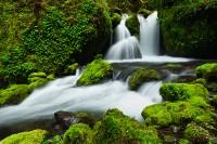 """Neverland Falls"""
