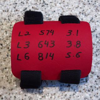Ballistics D.O.P.E. Card: EMS Red