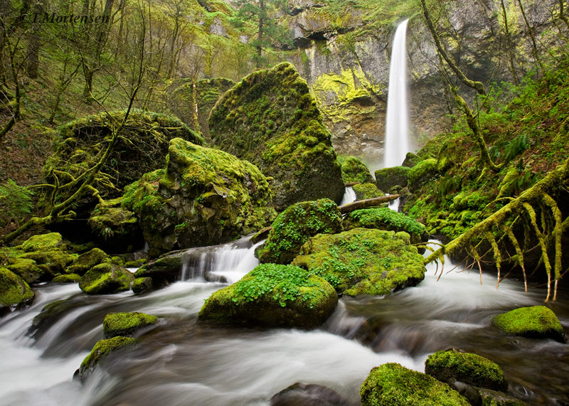 Elowah Falls drop 200ft into the Columbia River Gorge after a heavy spring run off.