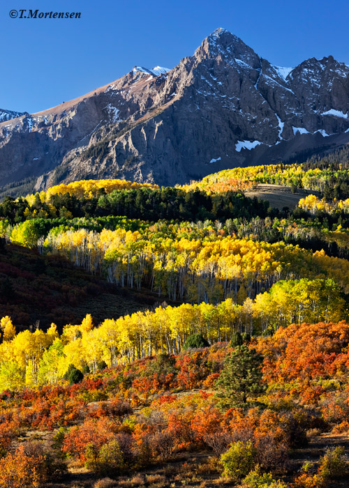San Juan Mountains at Delta Junction lined with autumn colors.