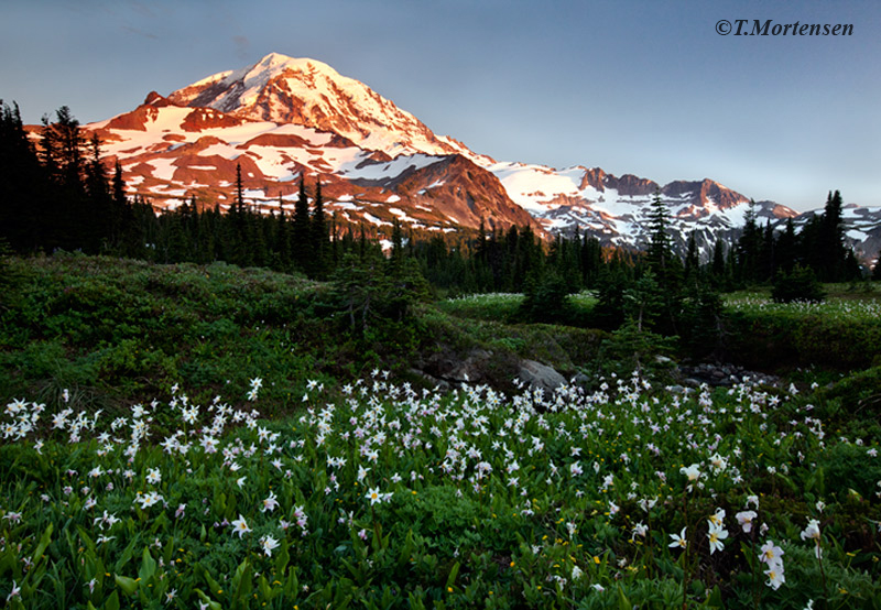 Alpenglow is an optical phenomenon that can happen after the sun has set below the horizon and it causes a horizontal red glowing...