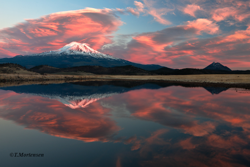 Powerful sunset skies engulfed Mt Shasta that reflect in a small winter pond.