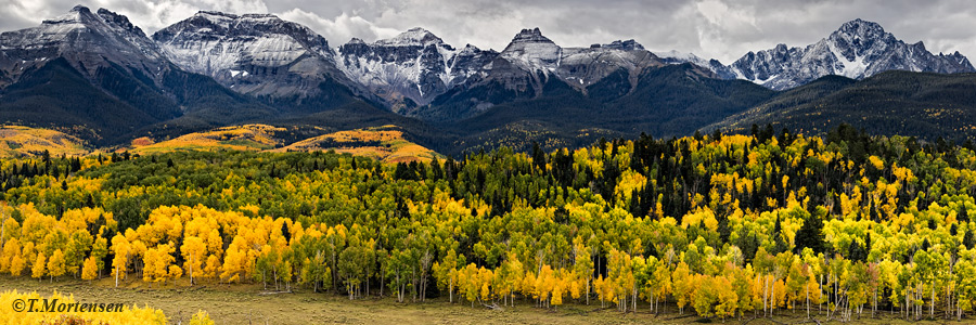 San Juan Mountains and the Sneffels Range lined with golden aspens.
