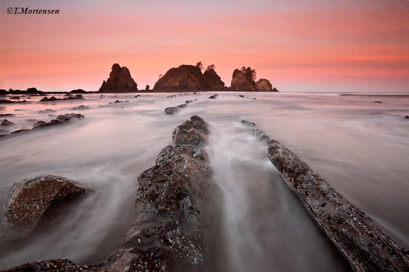 Exposed rocks at sunrise provide spectacular leading lines to the Point of Arches on Shi Shi Beach in the Olympic National Park...